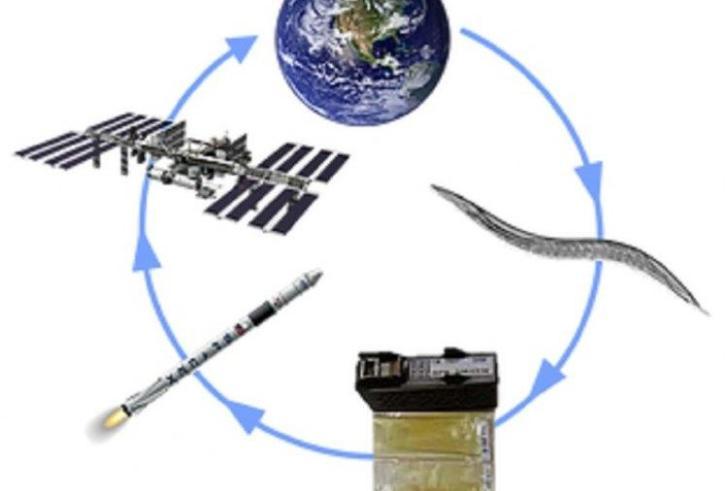 ΤΟ ΙΤΕ συμμετέχει σε πείραμα στον Διεθνή Διαστημικό Σταθμό!