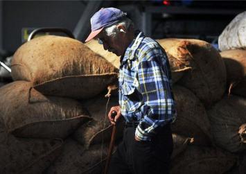 Η αύξηση κατώτατου μισθού επιβαρύνει τα αγροτικά ασφάλιστρα