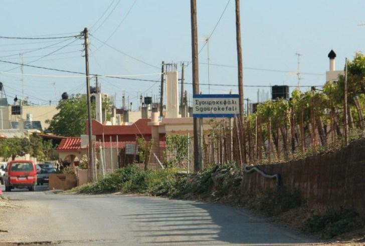 Σγουροκεφάλι: Ένα λαμπρό παράδειγμα από την Κρήτη που «φωτίζει» όλη τη χώρα