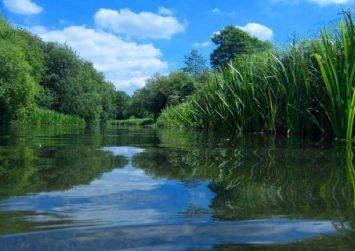 Γεμάτα αντιβιοτικά είναι πολλά ποτάμια της Γης