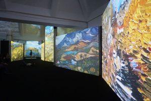Van Gogh Alive walls