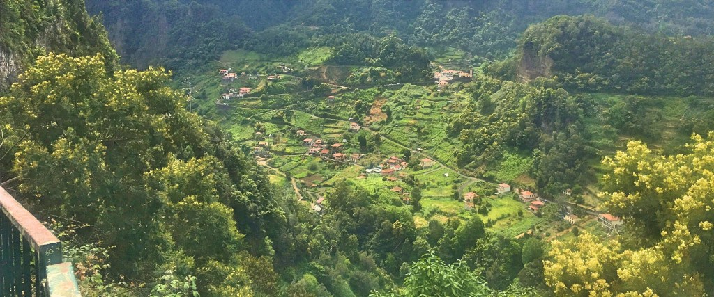 Valley in Madeira