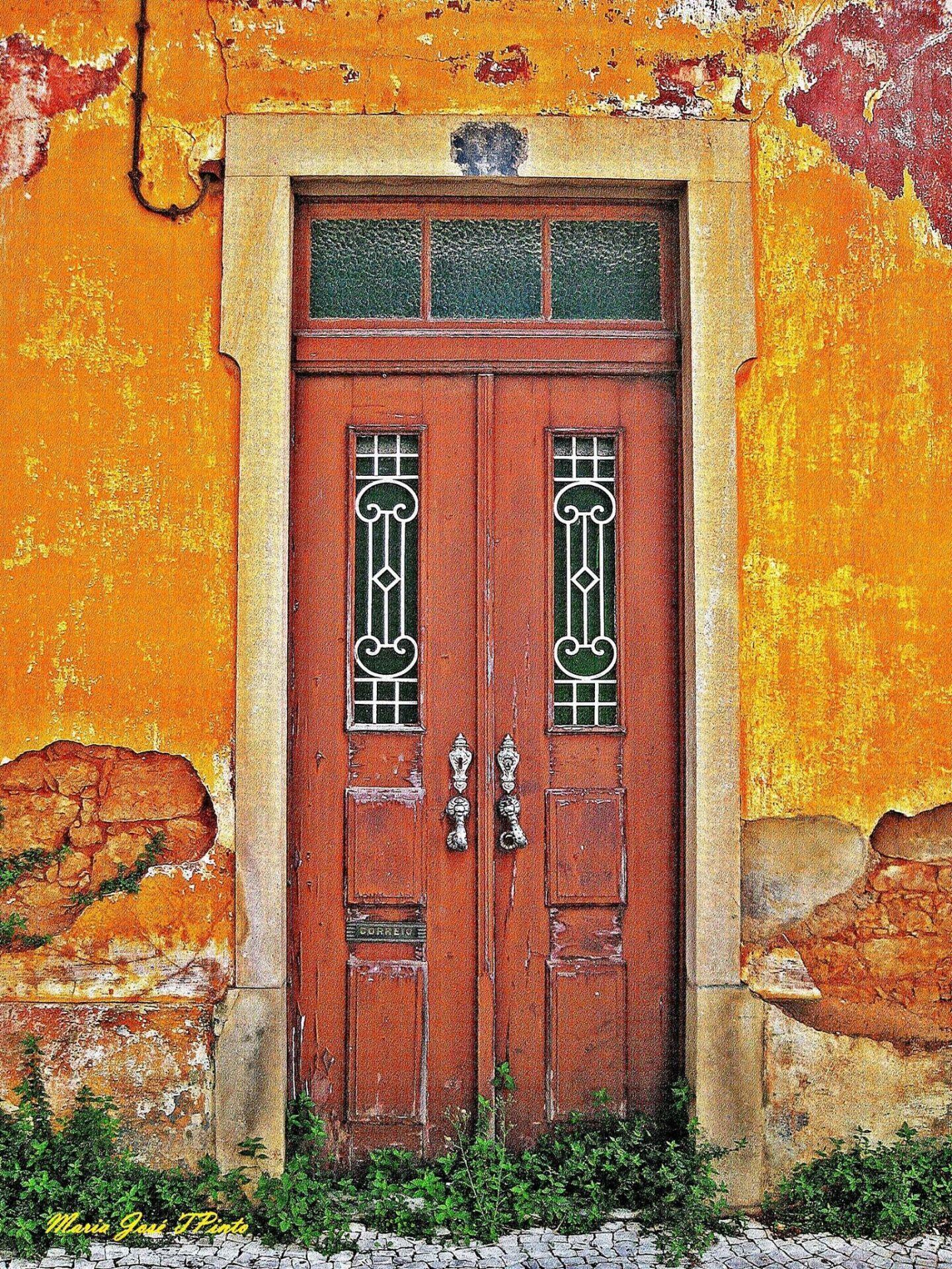 Portuguese door 2