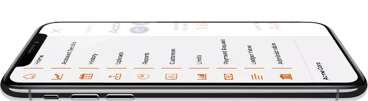 iphoneX - Professional Services