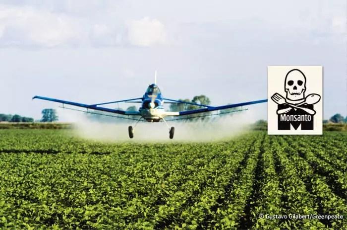Monsanto pagou ao Google para censurar resultados de pesquisa e desacreditar jornalistas