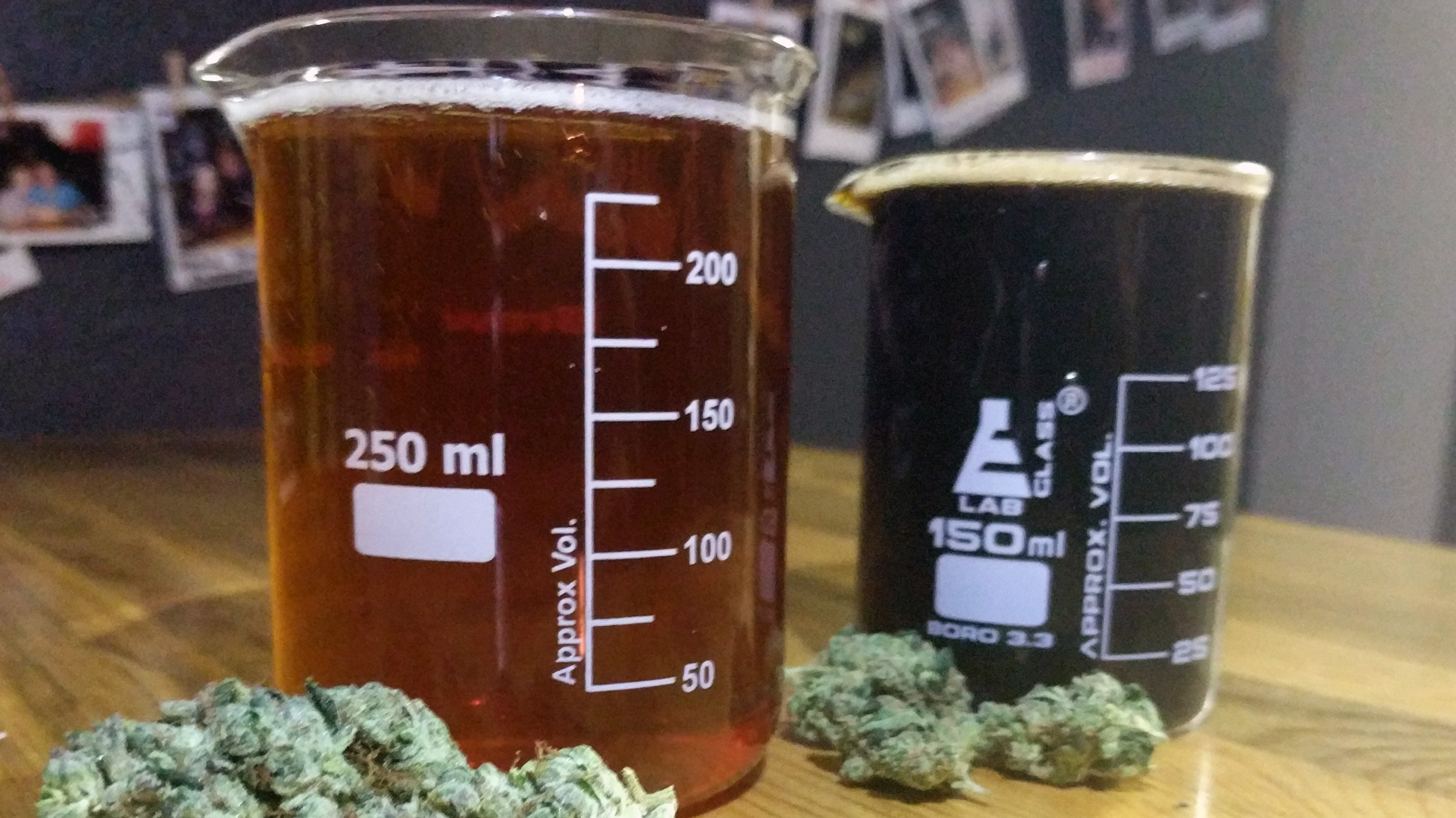 tilray und anheuser wollen cannabis
