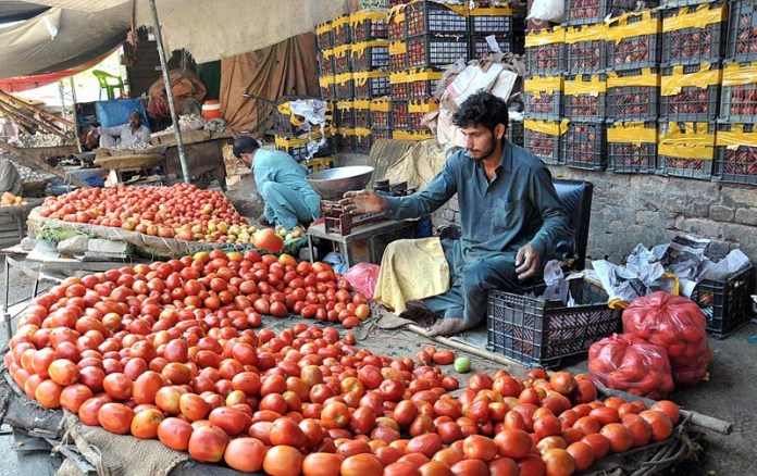 ISLAMABAD: September 22 – Stall holders displaying fresh tomatoes to attract the customers Vegetable Market. APP photo by Saeed-ul-Mulk