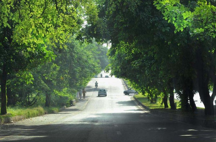 ISLAMABAD: September 27 – An attractive view of trees along the roadside near Aabpara market. APP photo by Irshad Sheikh