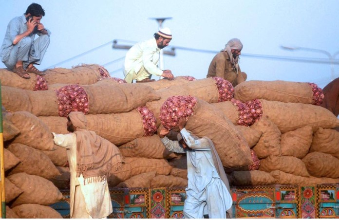 ISLAMABAD: September 18 – Labourers busy in unloading supply at fruit and vegetable market. APP photo by Irfan Mahmood