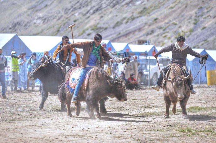 BROGHIL: September 13 – A view of Yak Polo match during festival in Broghil Valley. APP