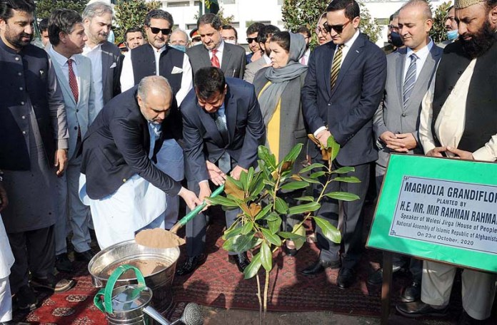 ISLAMABAD: October 23 – Speaker of the Wolesi Jirga of Afghanistan Mir Rahman Rahmani and Speaker National Assembly Asad Qaiser planting a sapling of Mangolia Grandiflora at Parliament Lawns. APP