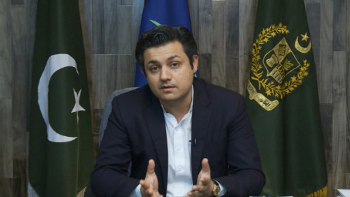Govt taking steps to revive national economy: Hammad Azhar