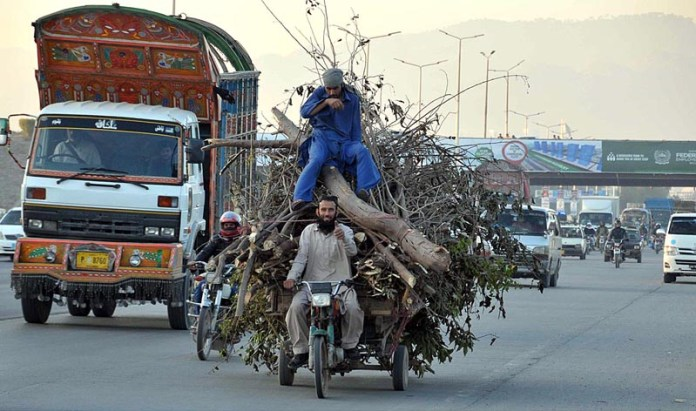 A tri-cycle loader on the way loaded with tree branch