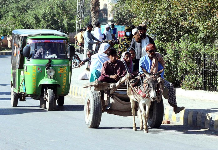A family on the way while traveling on the donkey driven cart heading towards their destination