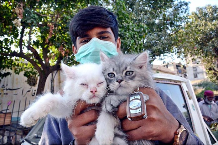 A vendor displaying cats to attract customers at Bird Market in Provincial Capital