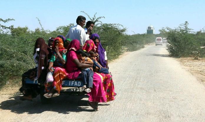 UMERKOT: November 07 – A large number of villager women traveling on loader vehicle at Chor Road. APP photo by Akram Ali