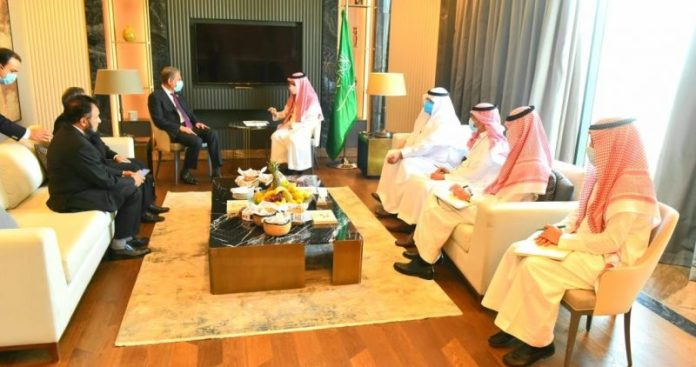 FM Qureshi, Saudi counterpart discuss bilateral relations, regional issues in Niamey