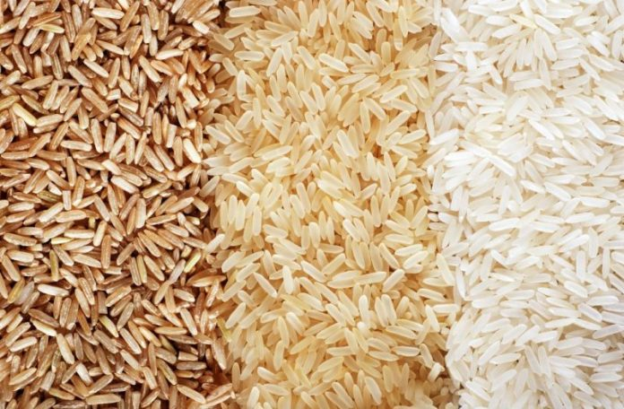 Seven hybrid rice varieties approved for commercial cultivation in country