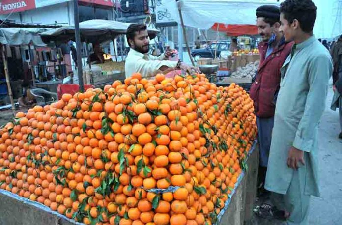 A vendor displaying oranges to attract the Customer at road side