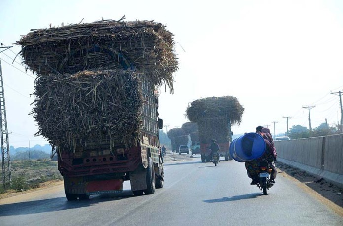A view of trucks on the way loaded with sugarcane at TM Khan Road