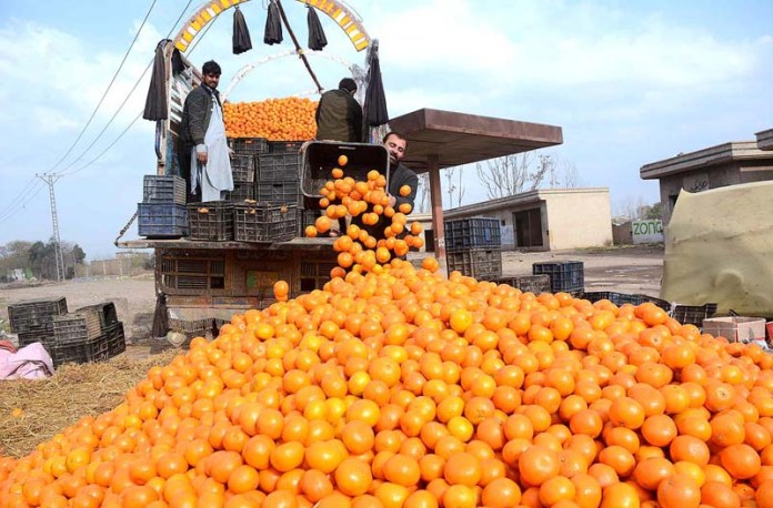Laborers busy in off loading orange's from delivery truck at Ring road