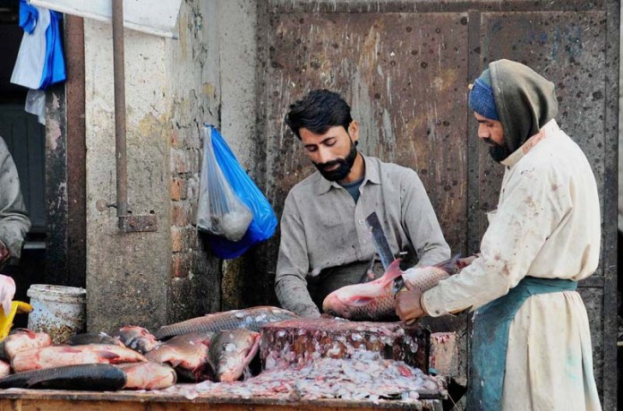 Vendors busy in cleaning fish for customer at fish market as increased demand during cold weather
