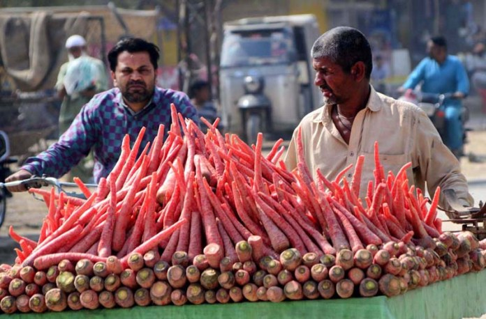 Vendor displaying carrots to attract the customers on his handcart