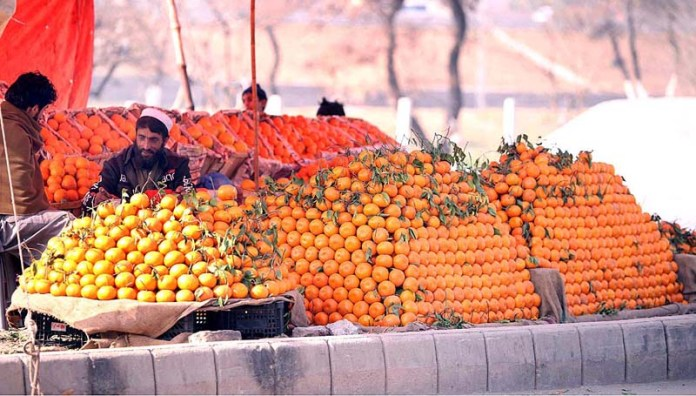 A vendor displaying different kind of oranges to attract the customers at his roadside setup