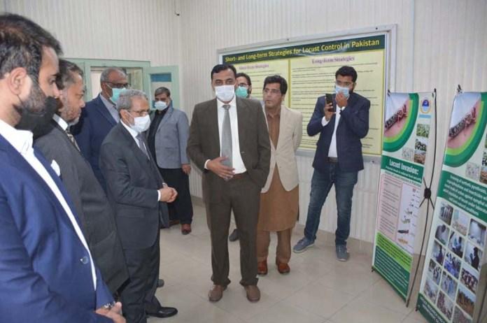 Ambassador of Republic of Yemen to Pakistan Mohammad Motahar Alashabi visiting Locust Research Center during his visit to University of Agriculture Faisalabad (UAF