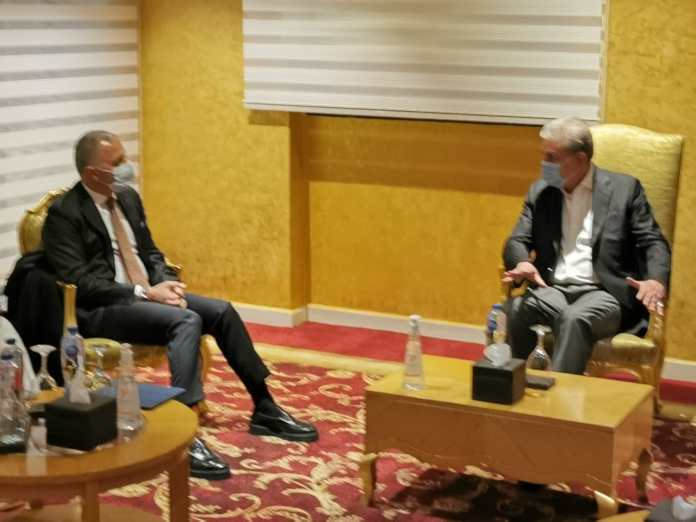 CEO of Elsewedy Electric of Egypt meets FM in Cairo