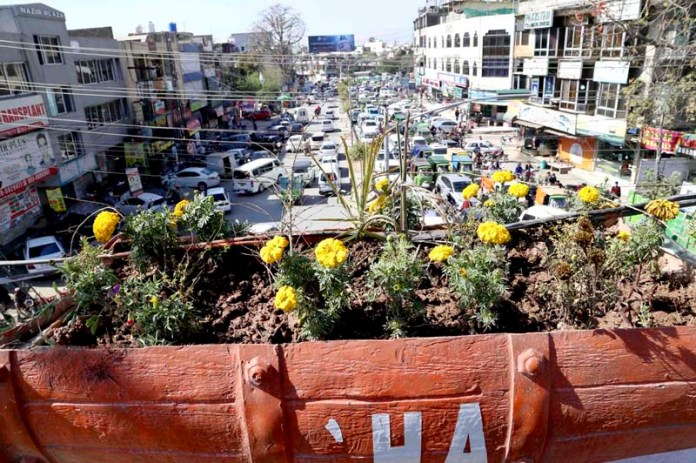 A view of newly planted flowers by PHA workers at Sixth Road area in the city
