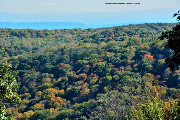 Autumn In High Knob Lake Basin - October 5, 2014