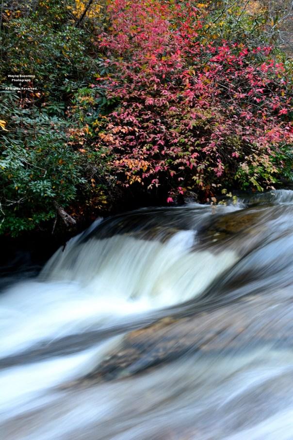 Little Stony Creek Whitewater - October 2014