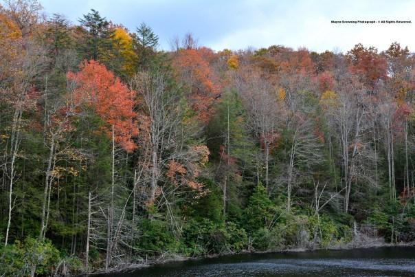 Big Cherry Lake of High Knob Massif - October 2014
