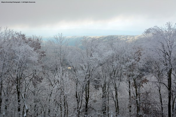 High Knob Lake Shines Amid Snow-Rime Covered Basin