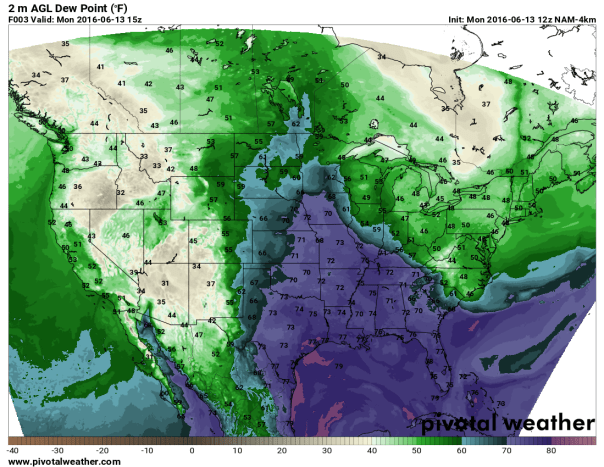 NAM 4 KM Model Dewpoint At 8 AM Monday