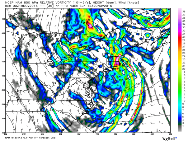 NAM 12 KM Model 850 MB Vorticity & Wind Vectors