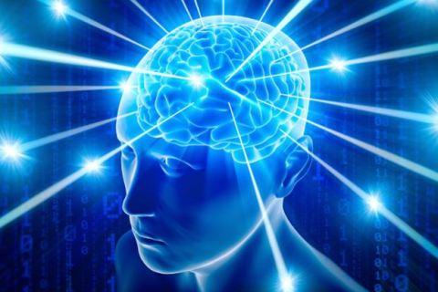 Reviva Brain