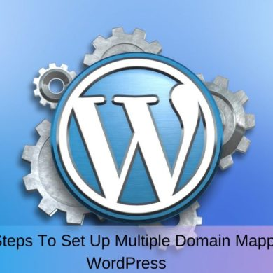 Multiple Domain On word press