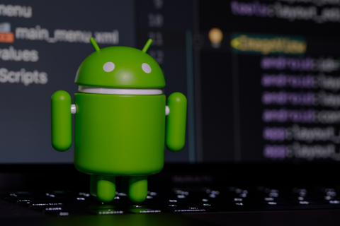 web development on android