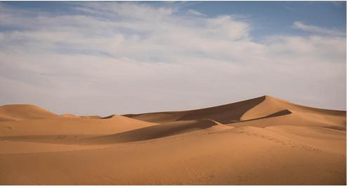 Insights of the Magnificent Marrakech Desert!!