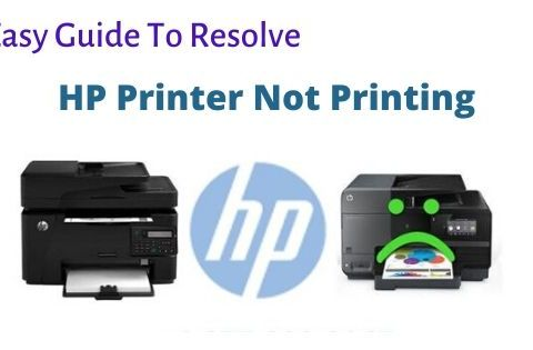 HP printer not printing