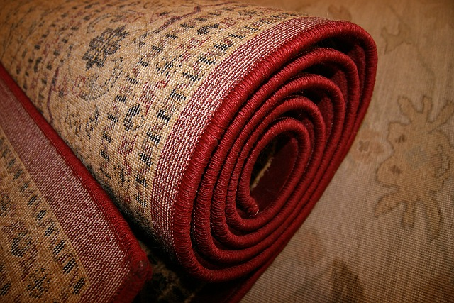 Devastating Effects of Water Damaged Carpet