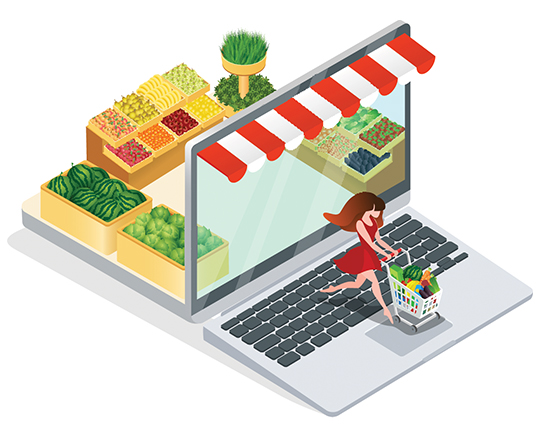 Reasons You Should Adopt the Online Grocery Delivery Script for Your New Grocery Delivery Startup