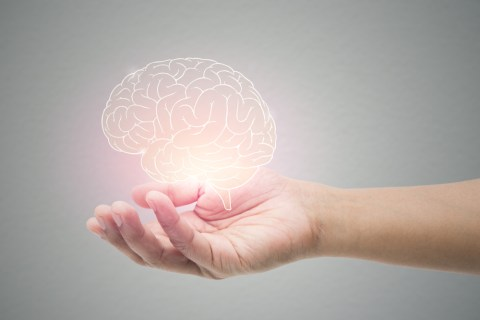 How to Keep Your Brain Healthy and Active?