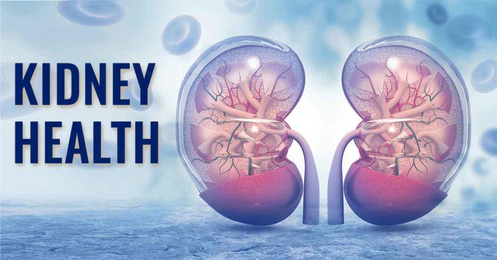 Ensure Your Kidney Cleansing Through Various Ways