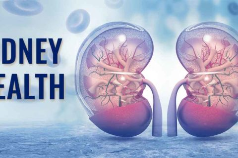 kidney cleansing