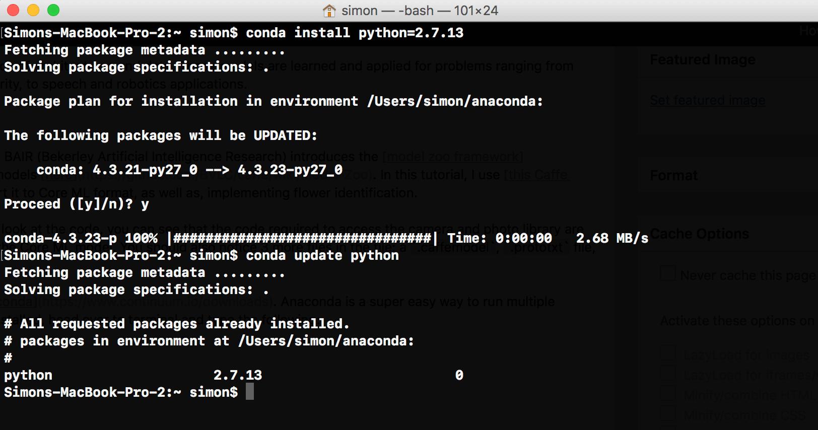 install-python-terminal