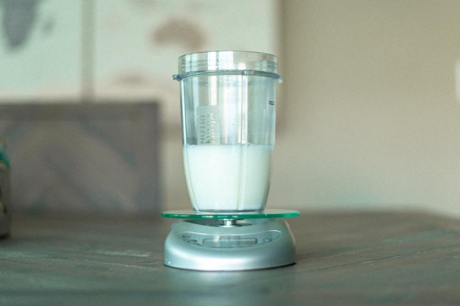 1000 Calorie Protein Shake Recipe Whole Milk