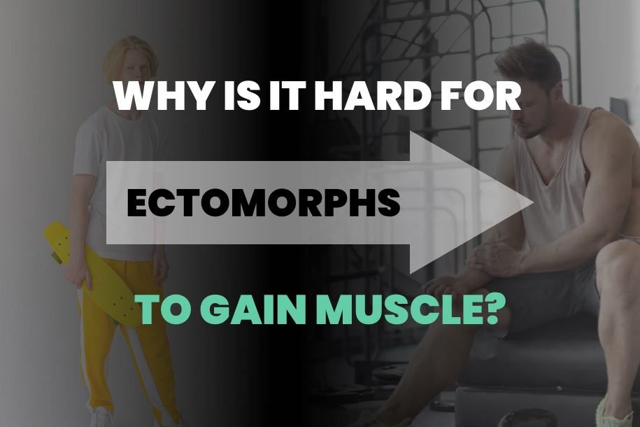 Why is it Hard for Ectomorphs to Gain Muscle